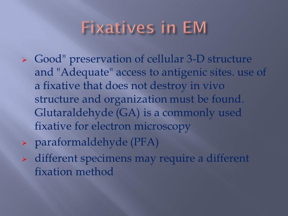 Fixatives in EM