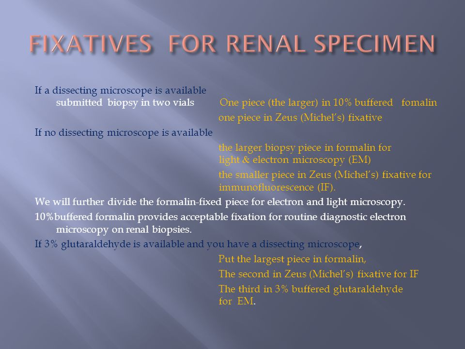 FIXATIVES FOR RENAL SPECIMEN