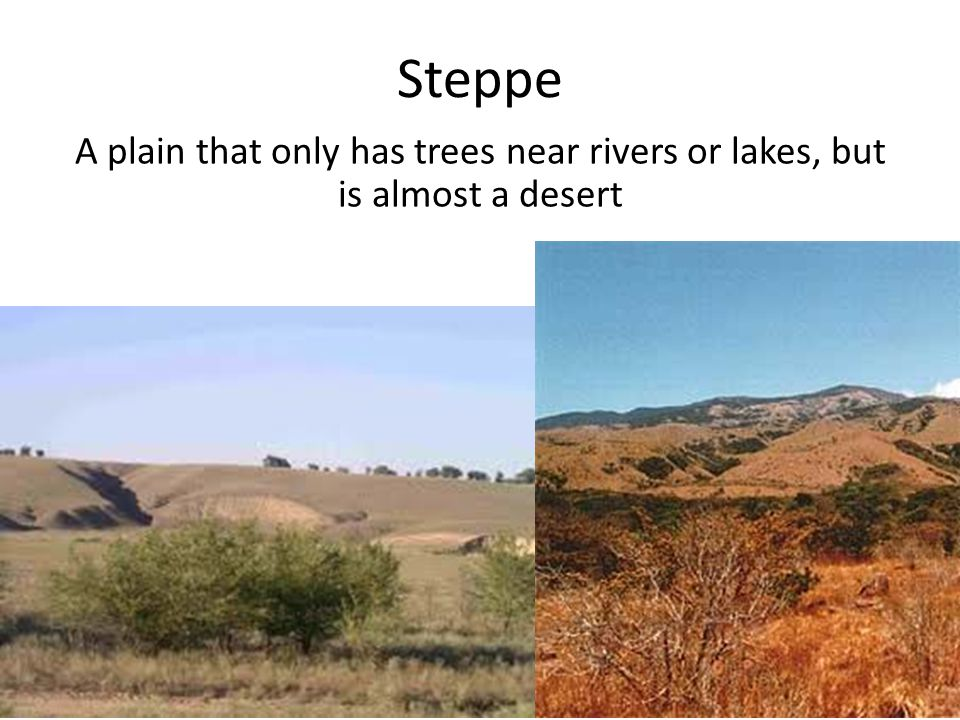 Steppe A plain that only has trees near rivers or lakes, but is almost a desert.