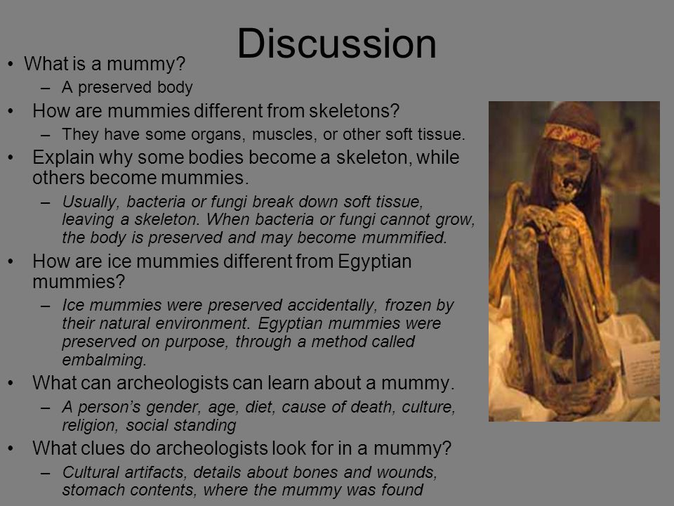 Discussion • What is a mummy