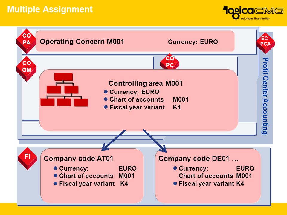 Multiple Assignment Profit Center Accounting Operating Concern M001