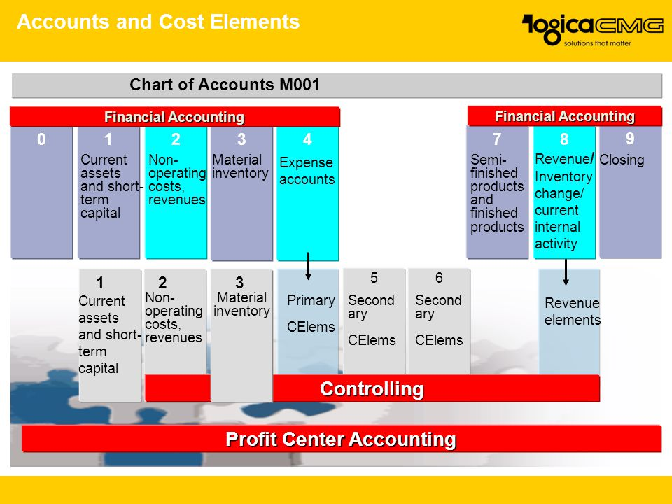 Accounts and Cost Elements
