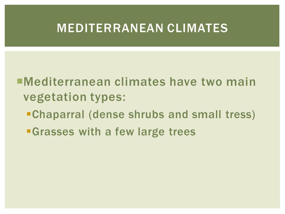 Mediterranean climates