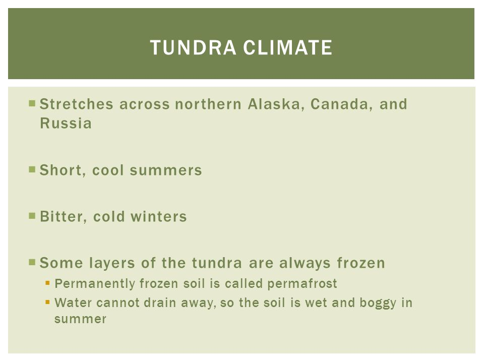 Tundra climate Stretches across northern Alaska, Canada, and Russia