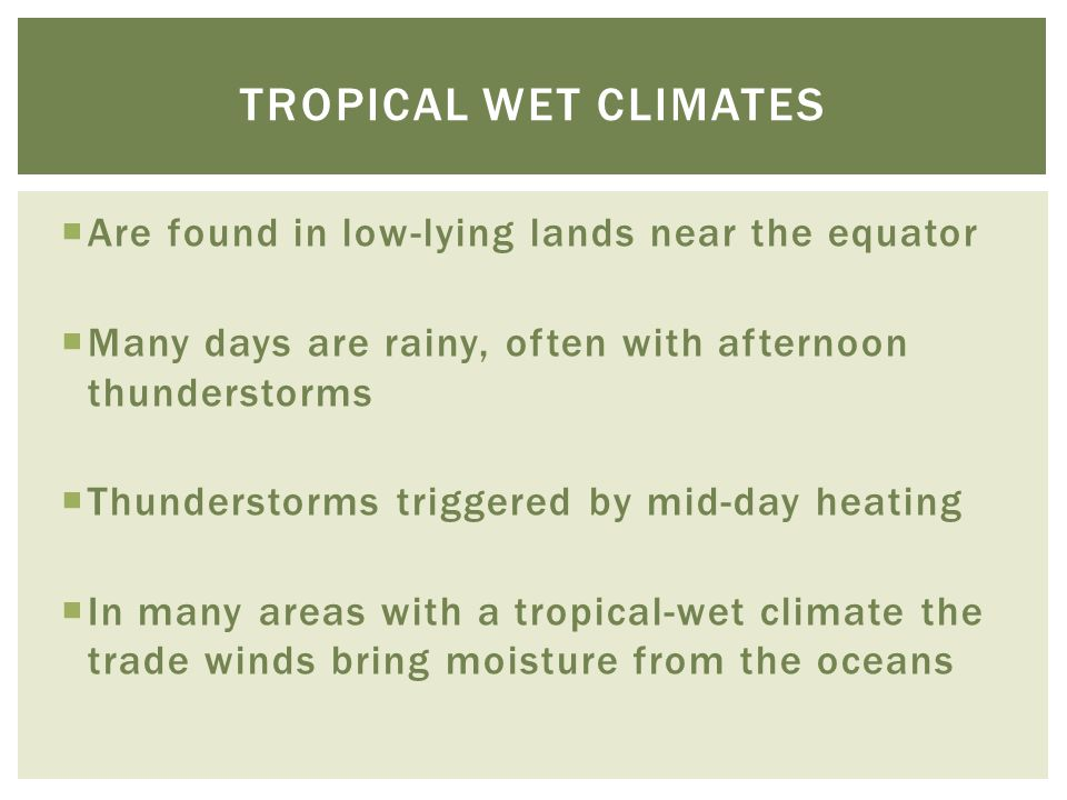 Tropical wet climates Are found in low-lying lands near the equator