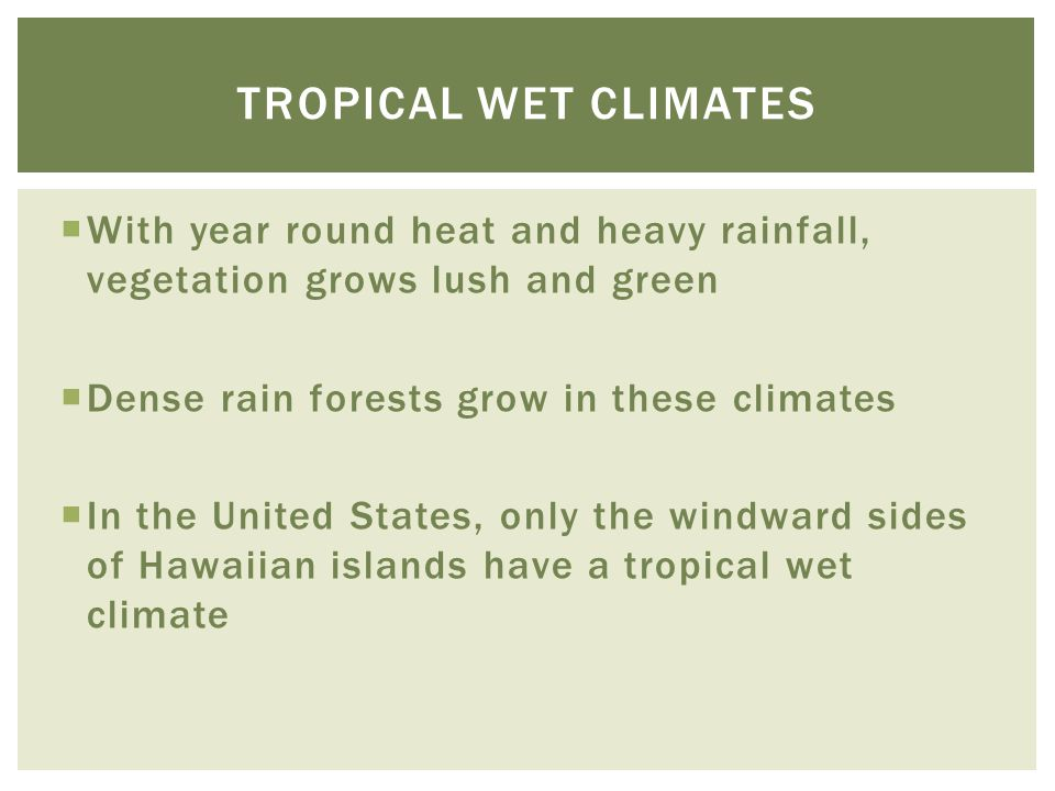 Tropical wet climates With year round heat and heavy rainfall, vegetation grows lush and green. Dense rain forests grow in these climates.