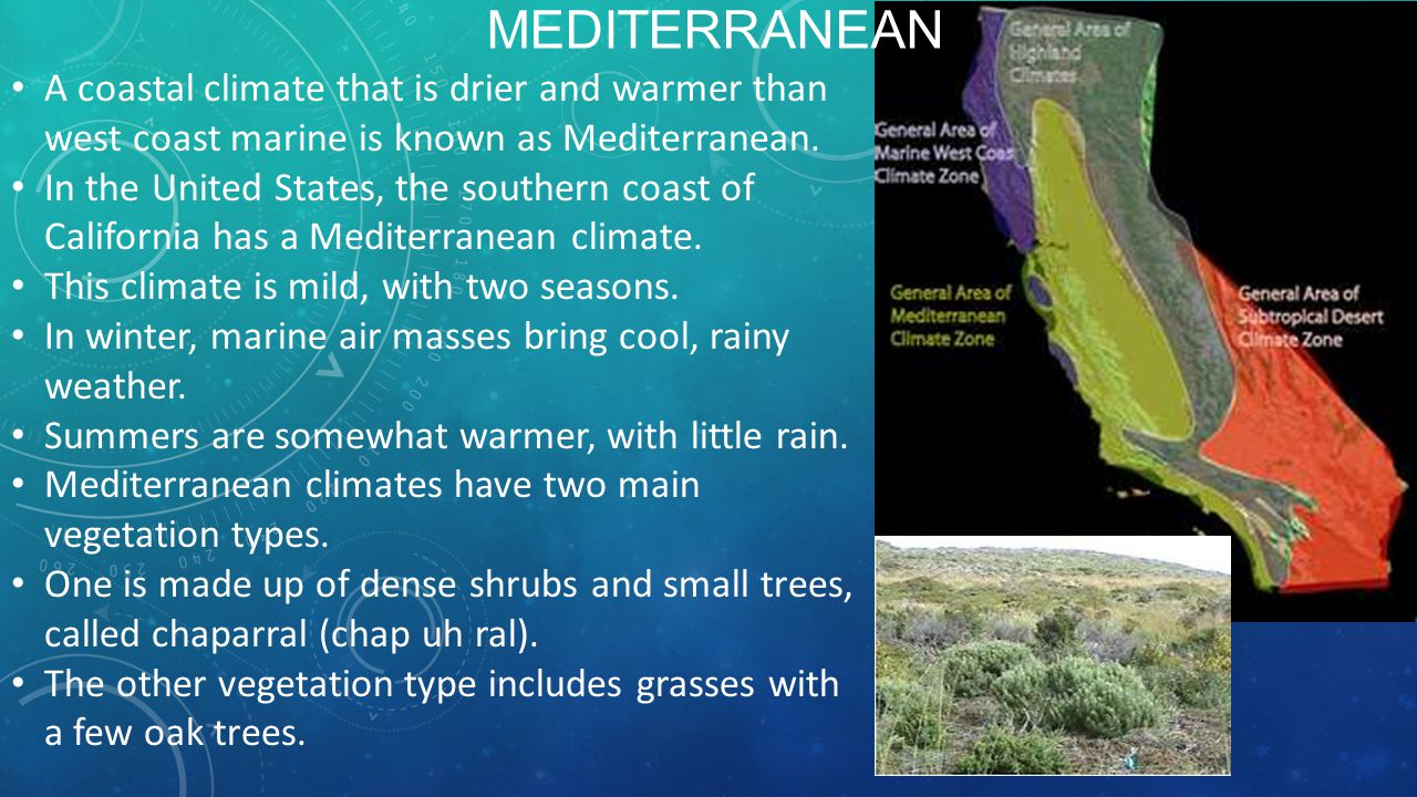 Mediterranean A coastal climate that is drier and warmer than west coast marine is known as Mediterranean.