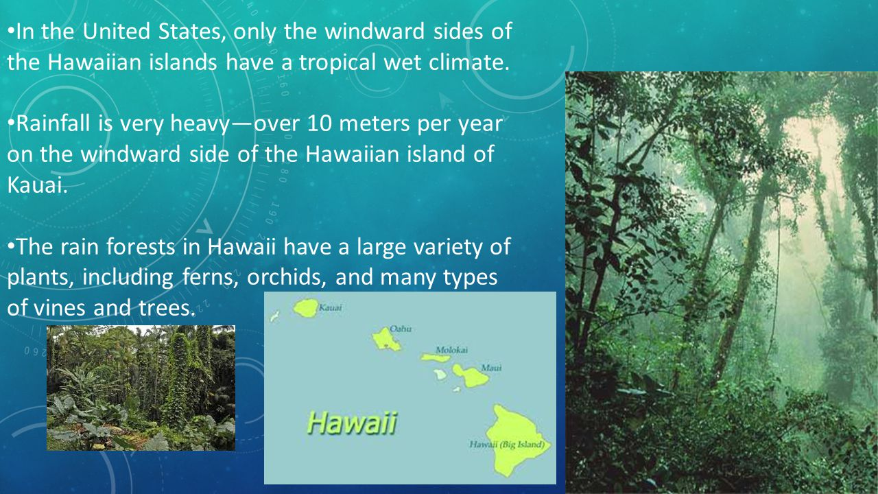 In the United States, only the windward sides of the Hawaiian islands have a tropical wet climate.
