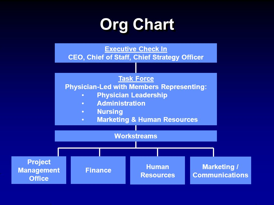 Org Chart Executive Check In