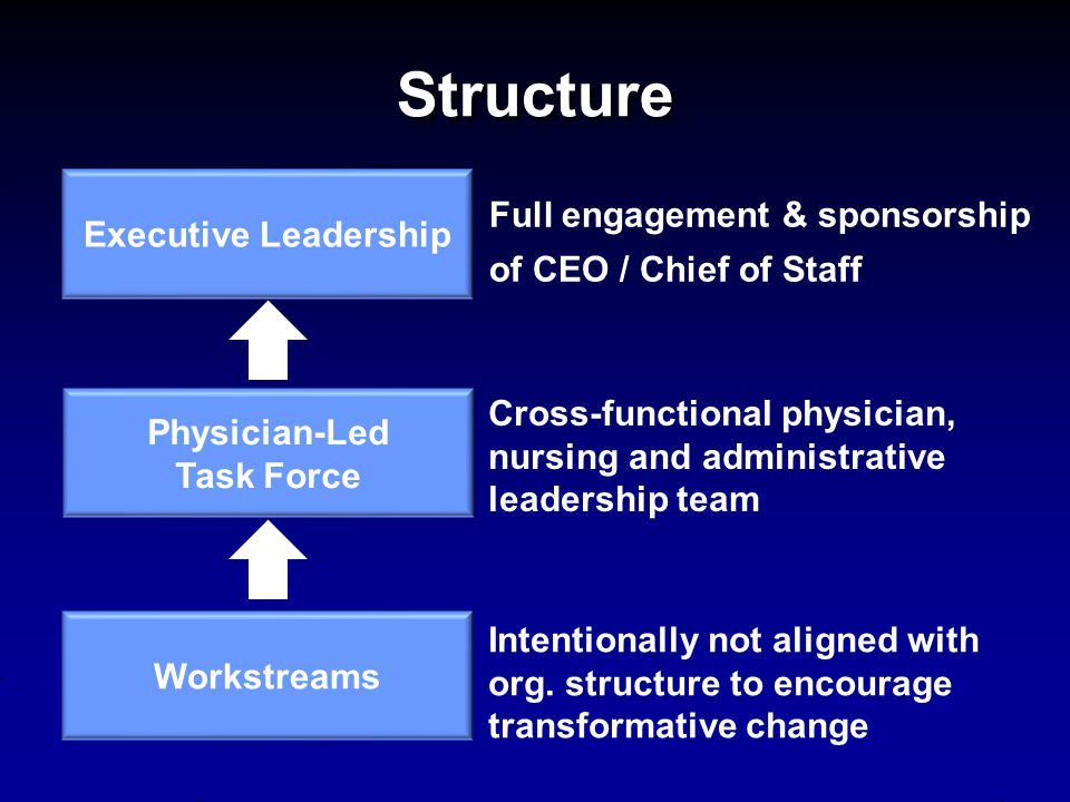 Structure Full engagement & sponsorship of CEO / Chief of Staff
