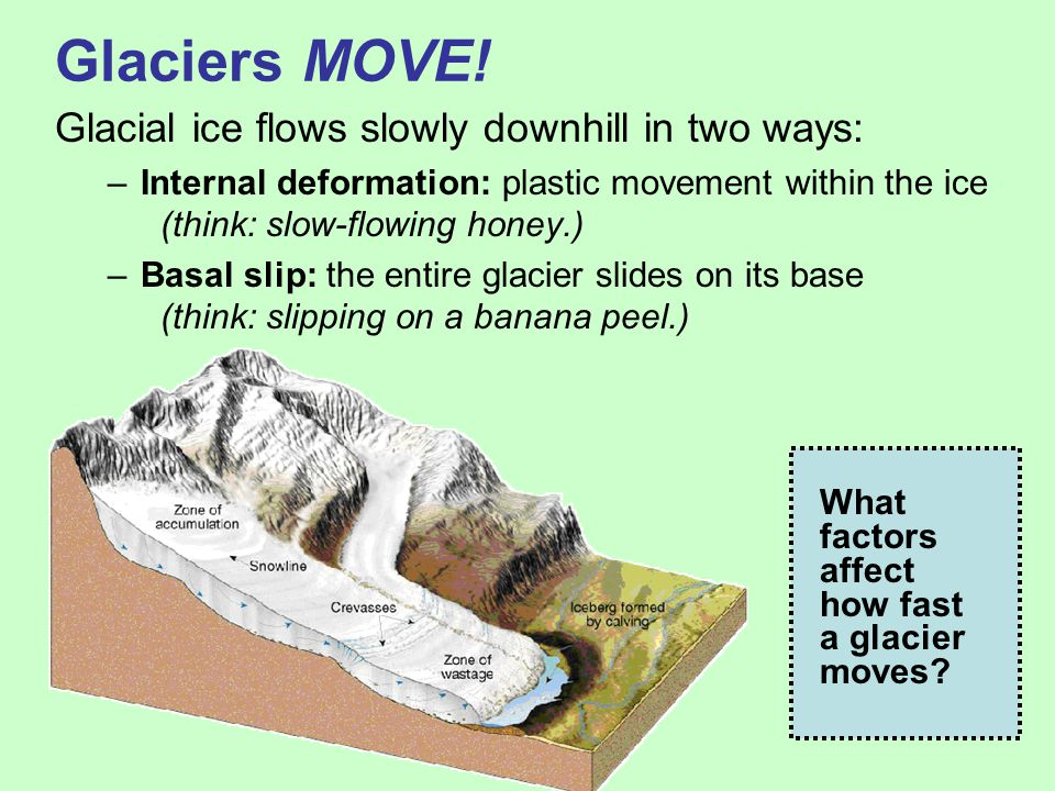 Glaciers MOVE! Glacial ice flows slowly downhill in two ways: