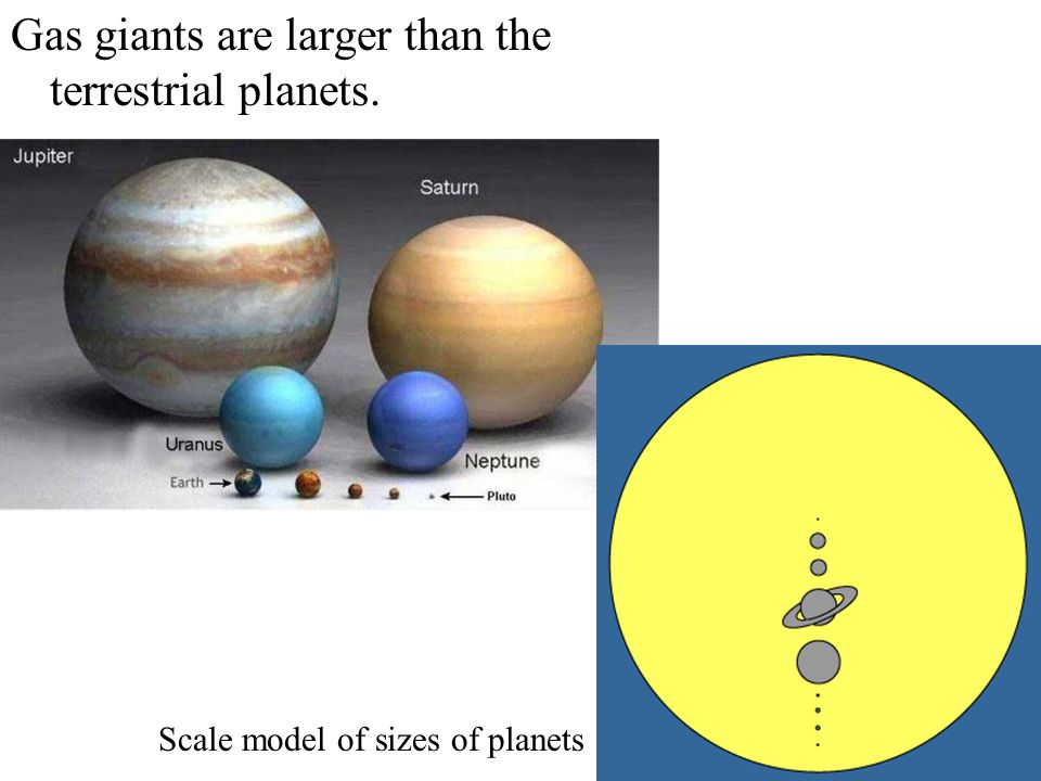 Gas giants are larger than the terrestrial planets.