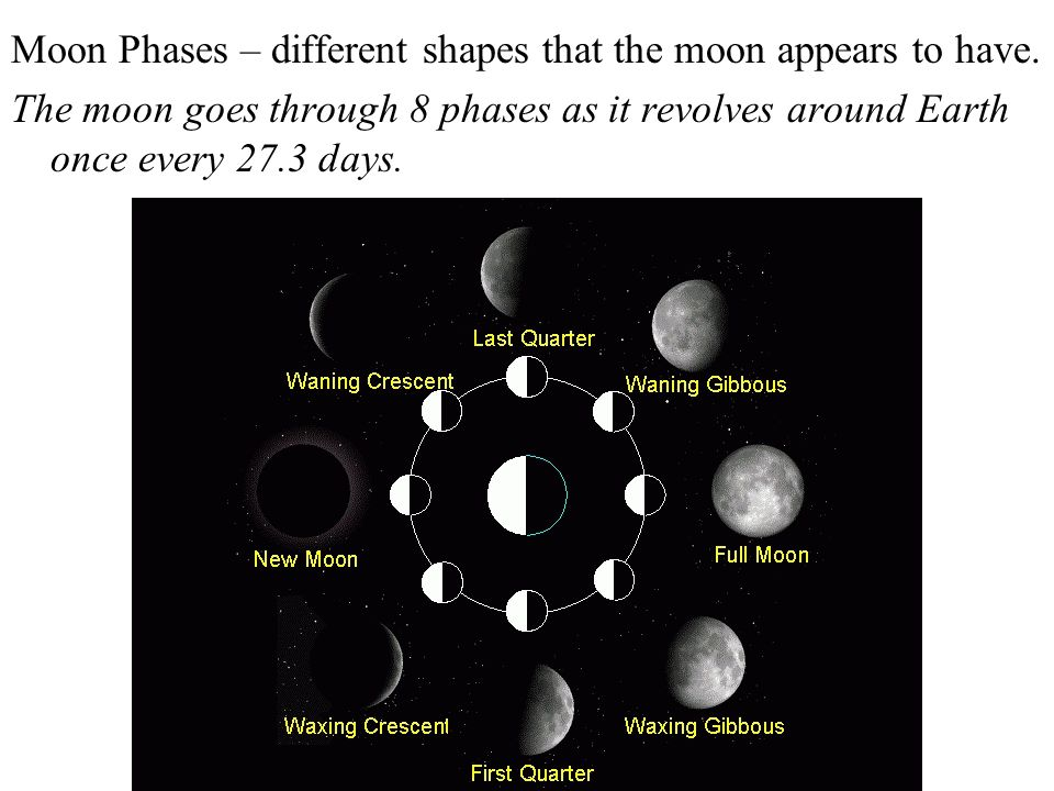 Moon Phases – different shapes that the moon appears to have.