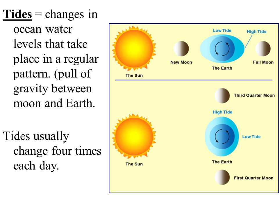 Tides = changes in ocean water levels that take place in a regular pattern. (pull of gravity between moon and Earth.