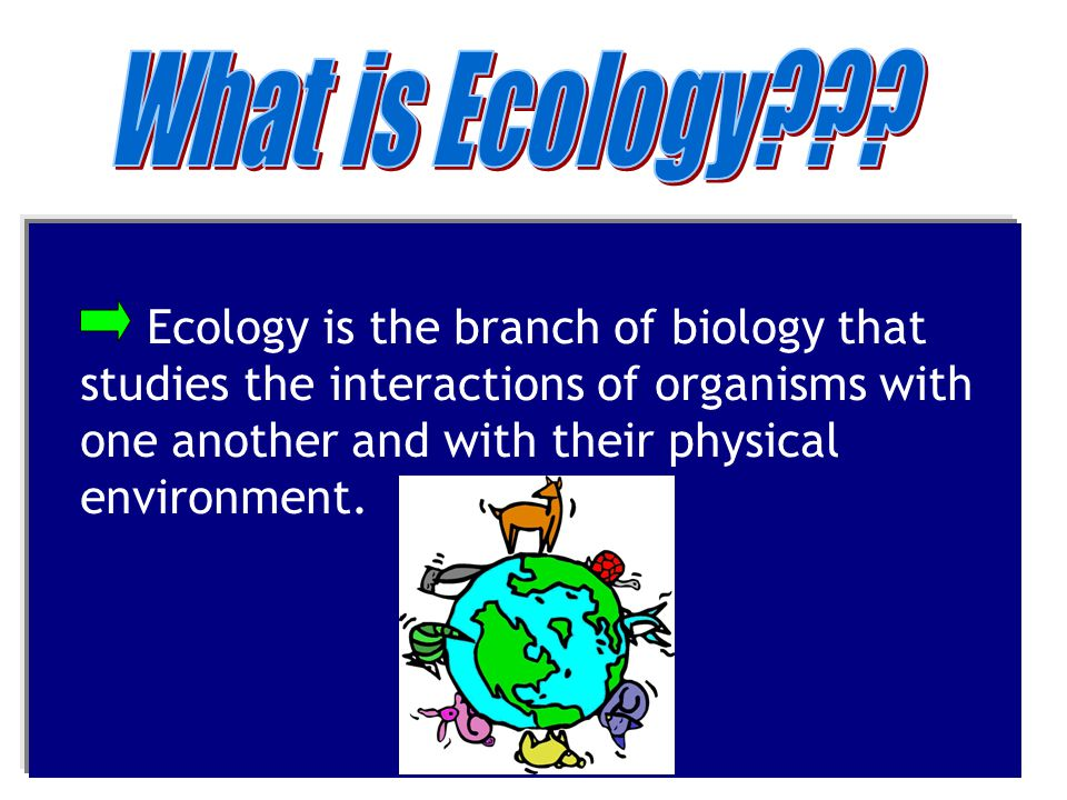 What is Ecology .