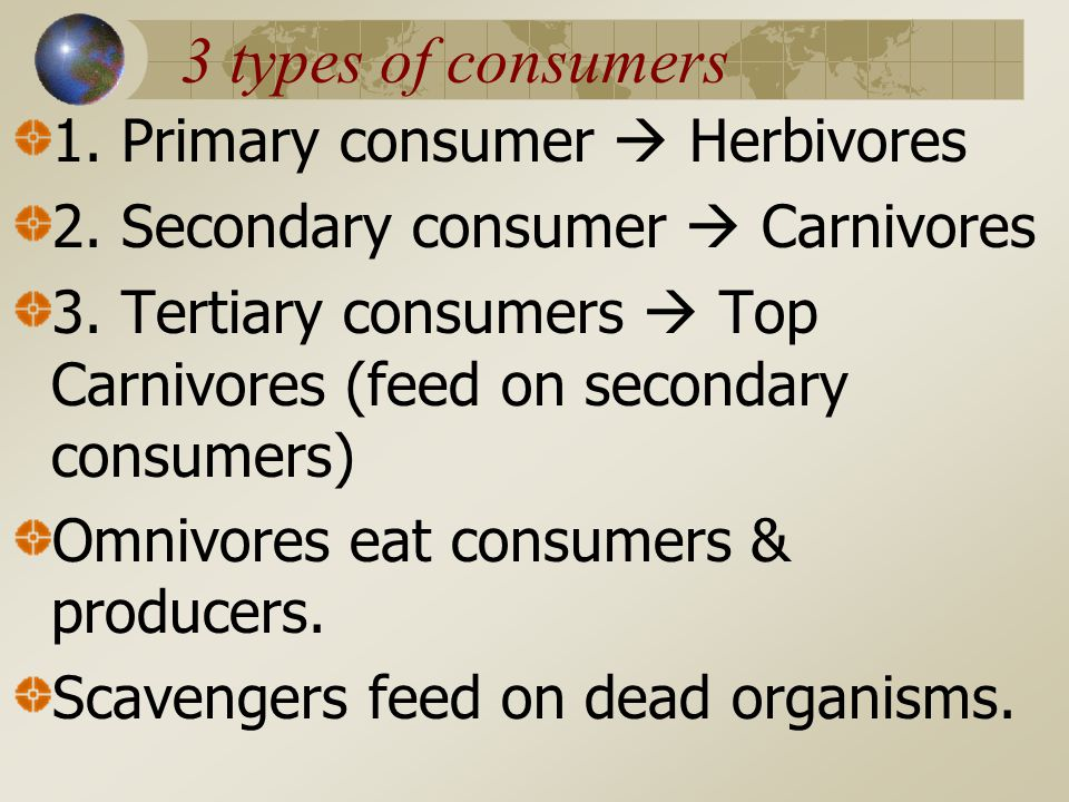 3 types of consumers 1. Primary consumer  Herbivores