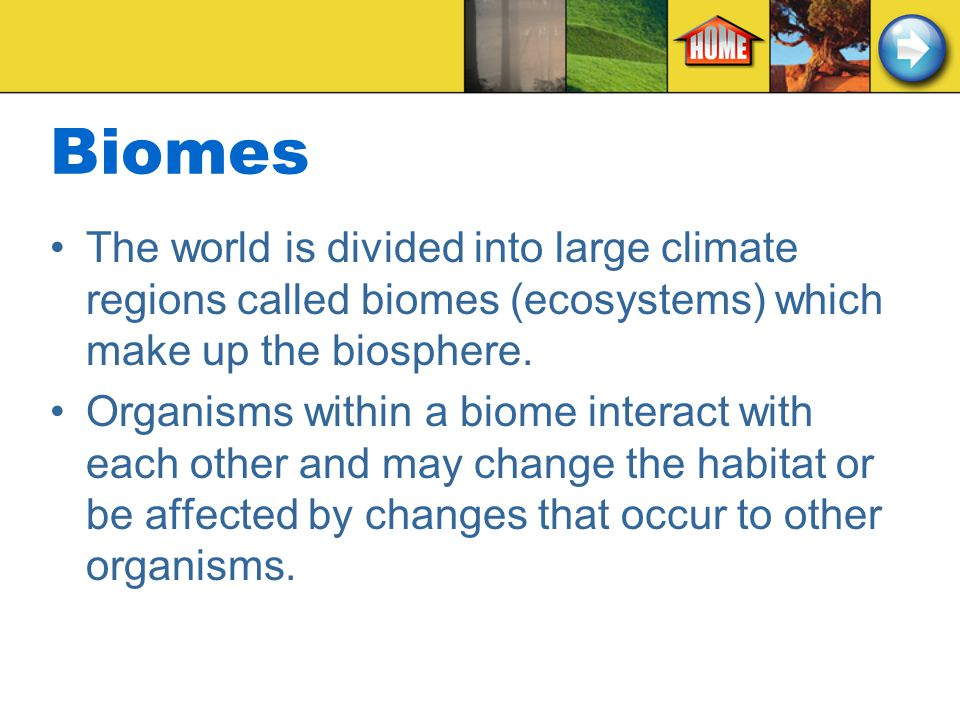 Biomes The world is divided into large climate regions called biomes (ecosystems) which make up the biosphere.