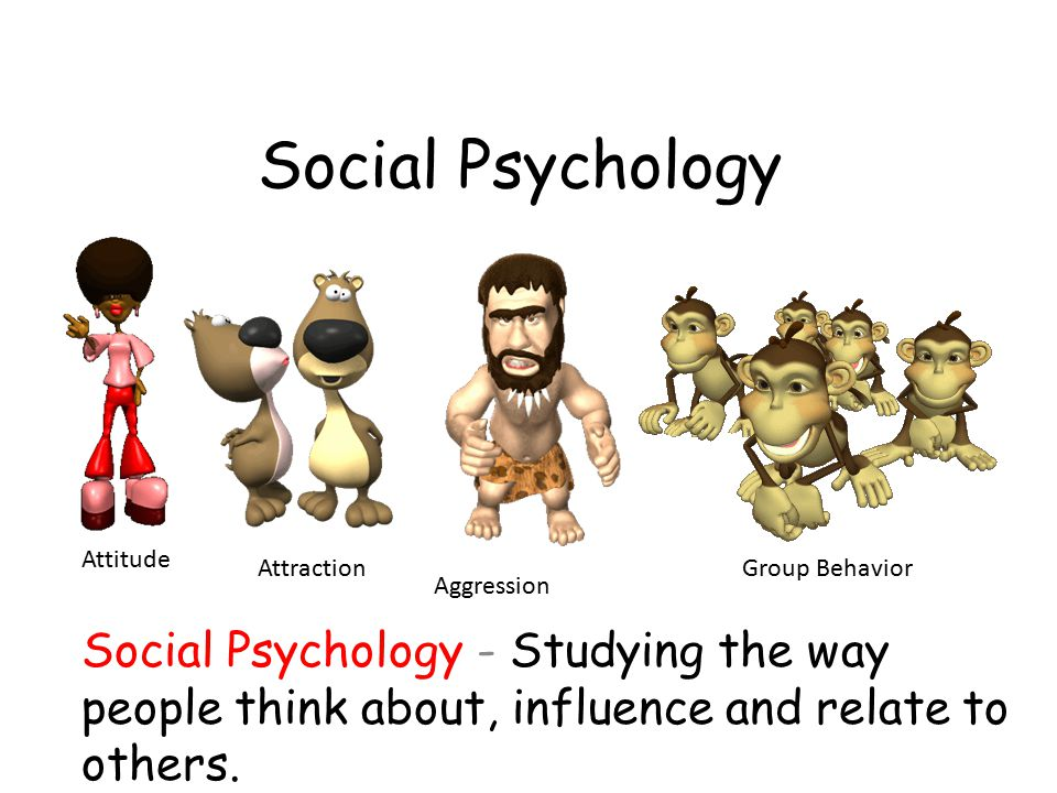 Social Psychology Attitude. Attraction. Group Behavior. Aggression.