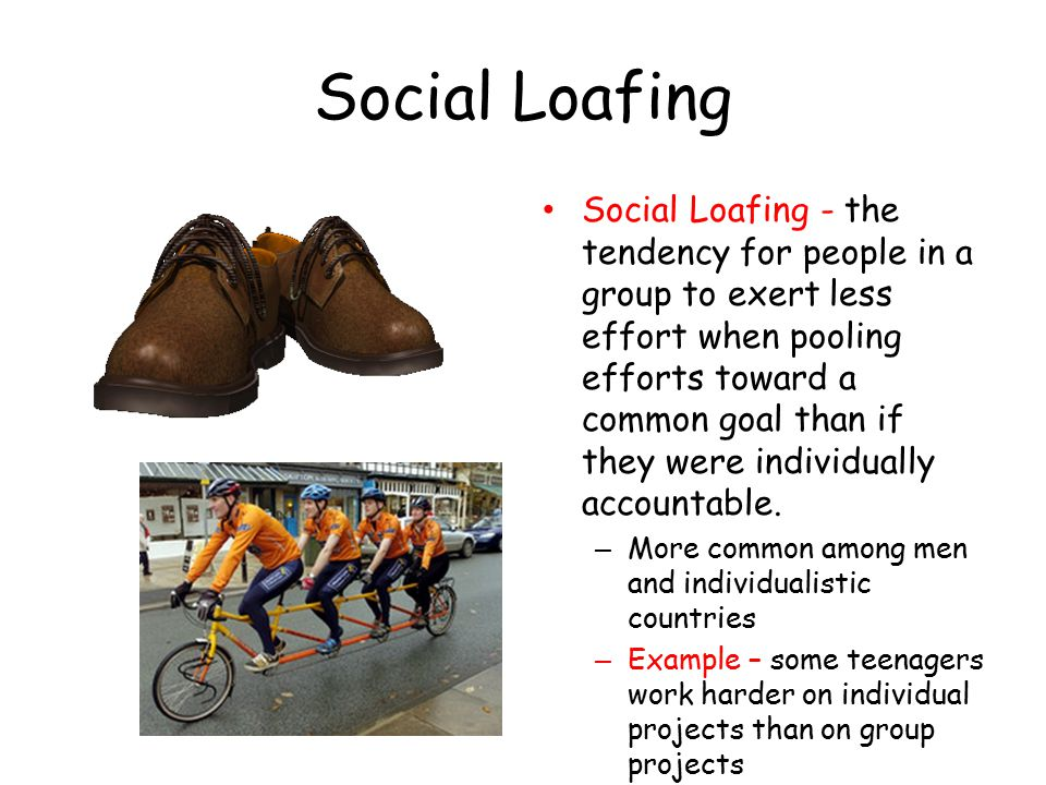 social loafing and group development Social loafing not only hurts the quality of a group project, but it's frustrating for hardworking students to deal with those who don't pull their weight.