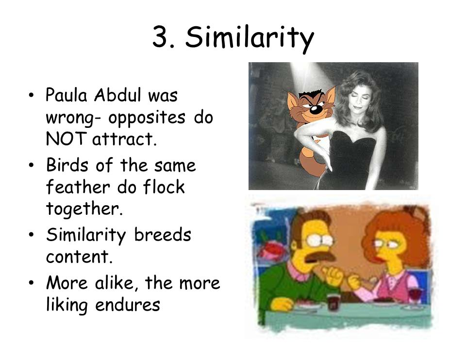 3. Similarity Paula Abdul was wrong- opposites do NOT attract.