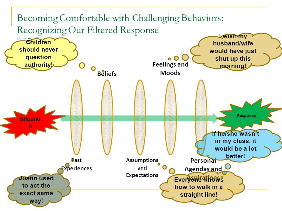 Becoming Comfortable with Challenging Behaviors: Recognizing Our Filtered Response ( Larrivee, 2005)