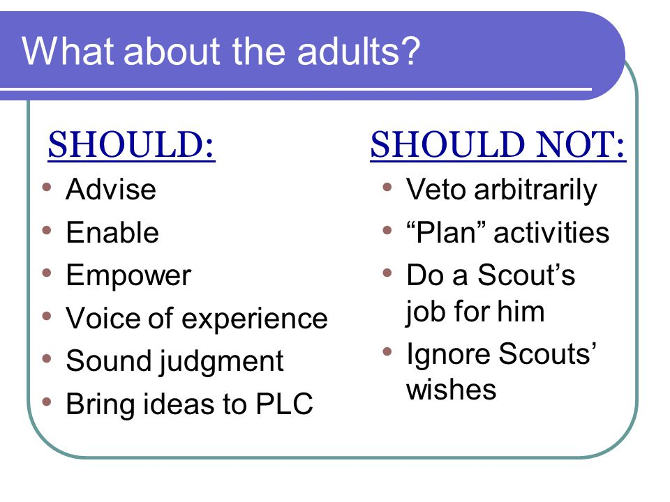 What about the adults SHOULD: SHOULD NOT: Advise Enable Empower