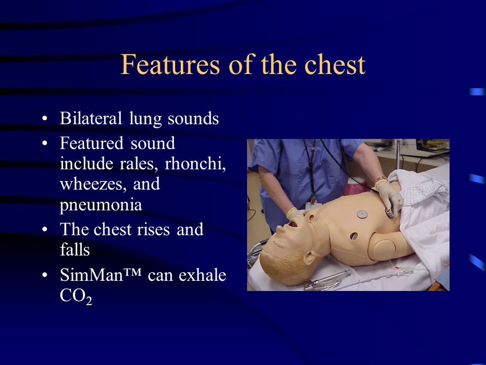 Features of the chest Bilateral lung sounds