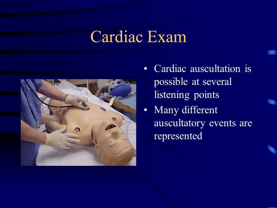Cardiac Exam Cardiac auscultation is possible at several listening points.
