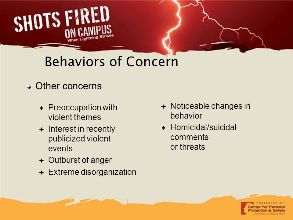 Behaviors of Concern Other concerns Preoccupation with violent themes