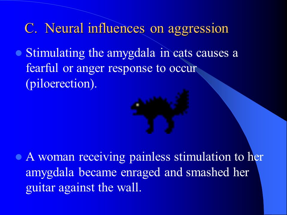 C. Neural influences on aggression