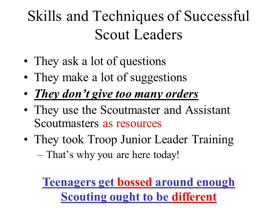 Skills and Techniques of Successful Scout Leaders