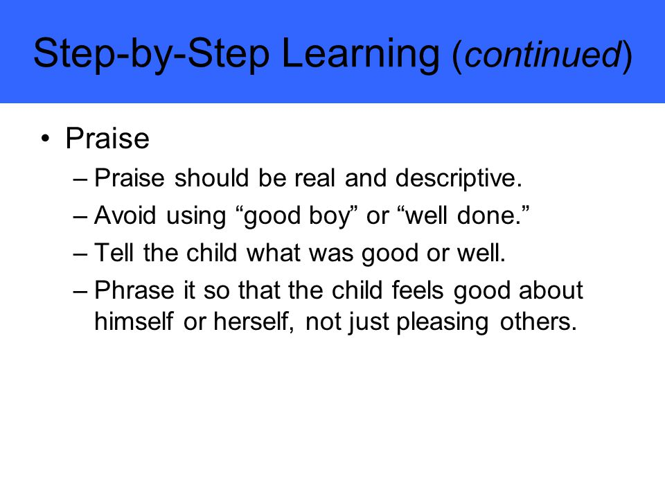 Step-by-Step Learning (continued)