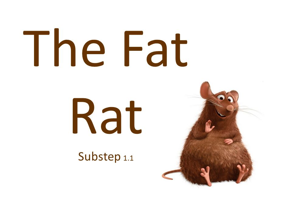 The Fat Rat Substep 1.1