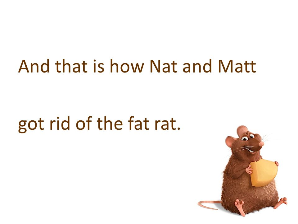 And that is how Nat and Matt got rid of the fat rat.