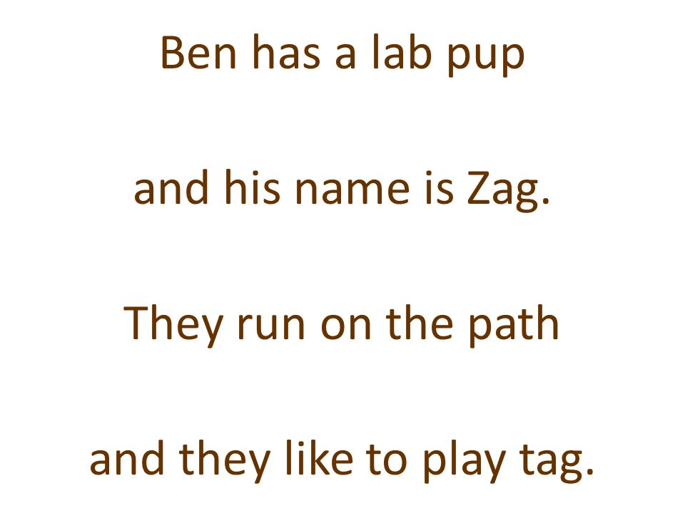 Ben has a lab pup and his name is Zag