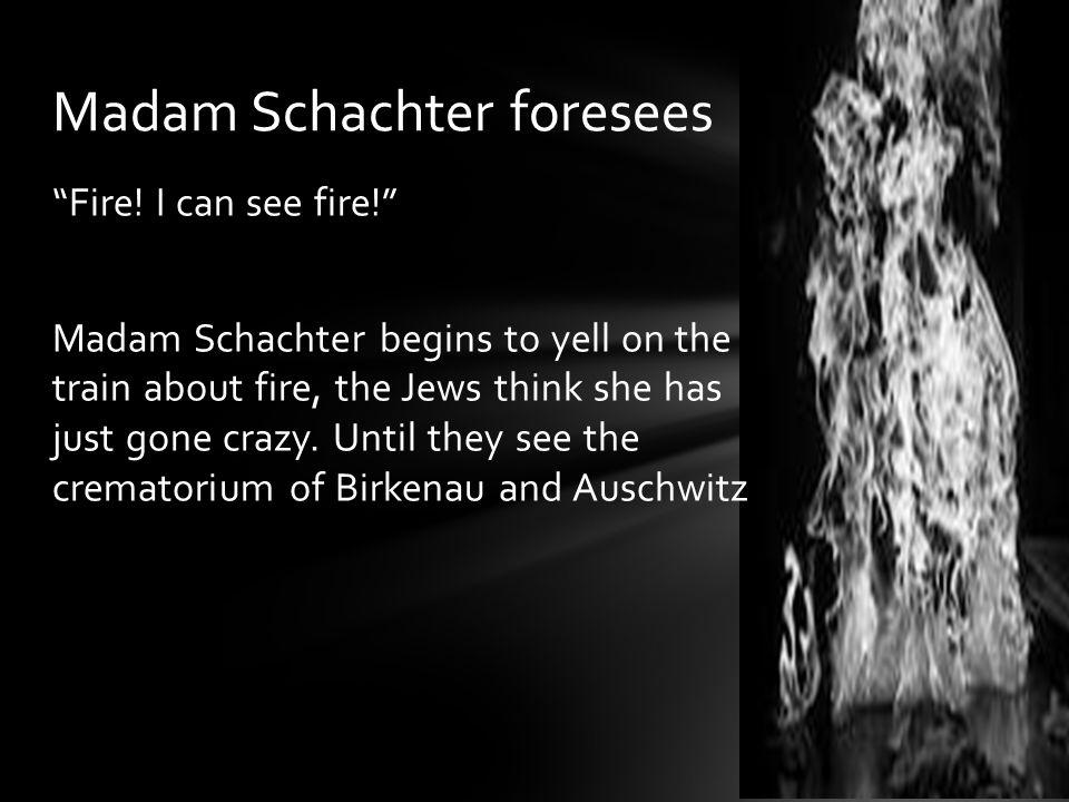 Madam Schachter foresees
