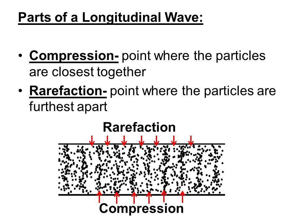 Parts of a Longitudinal Wave: