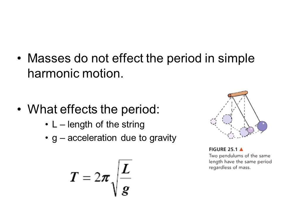 Masses do not effect the period in simple harmonic motion.