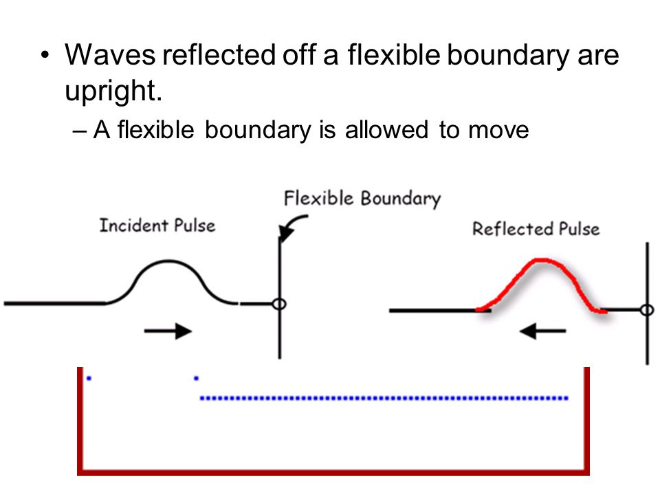 Waves reflected off a flexible boundary are upright.