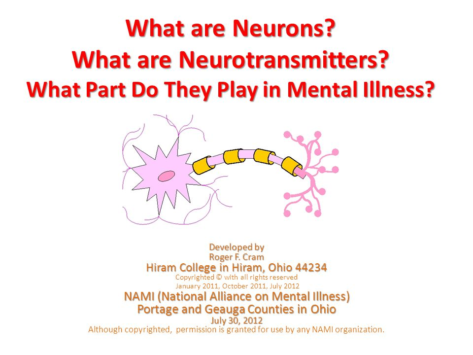 What are Neurons. What are Neurotransmitters