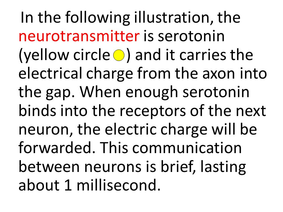 In the following illustration, the neurotransmitter is serotonin (yellow circle ) and it carries the electrical charge from the axon into the gap.