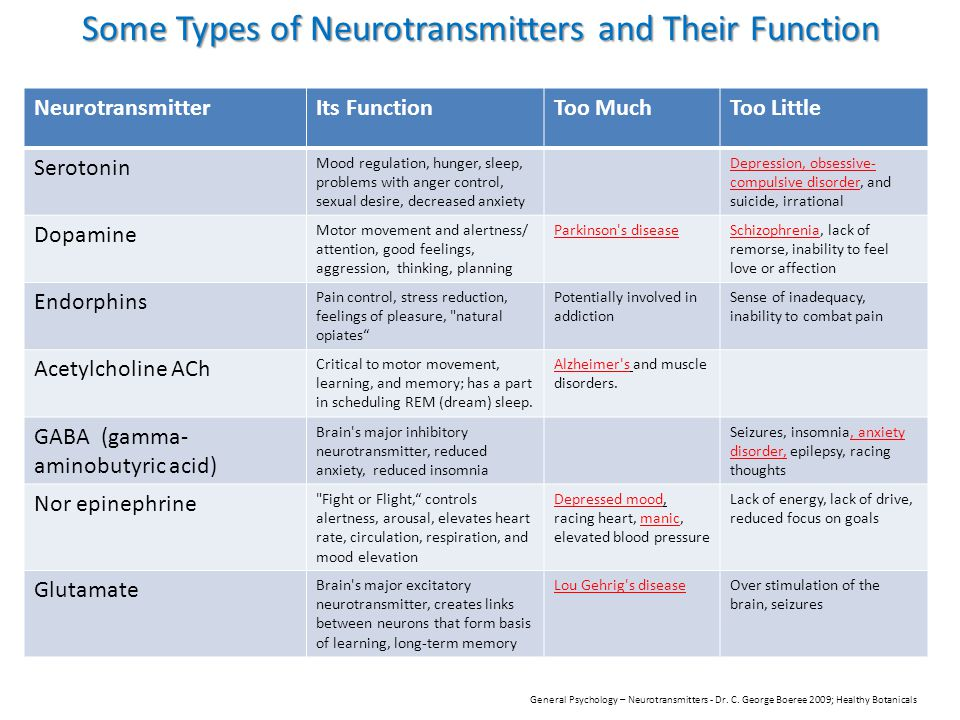 The role of neurotransmitters on aggression essay academic writing the role of neurotransmitters on aggression the neuron to which the neurotransmitters in the central nervous ccuart Image collections