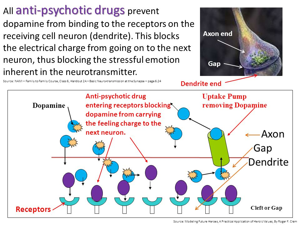 All anti-psychotic drugs prevent dopamine from binding to the receptors on the receiving cell neuron (dendrite). This blocks the electrical charge from going on to the next neuron, thus blocking the stressful emotion inherent in the neurotransmitter.