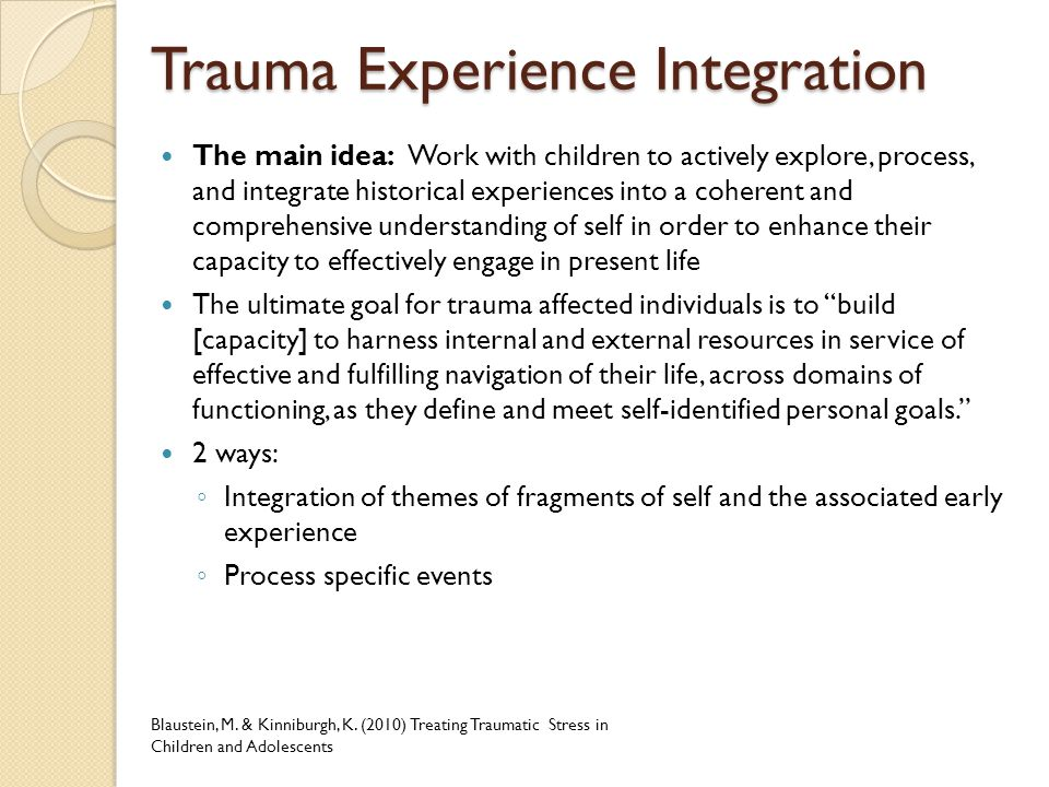 Trauma Experience Integration