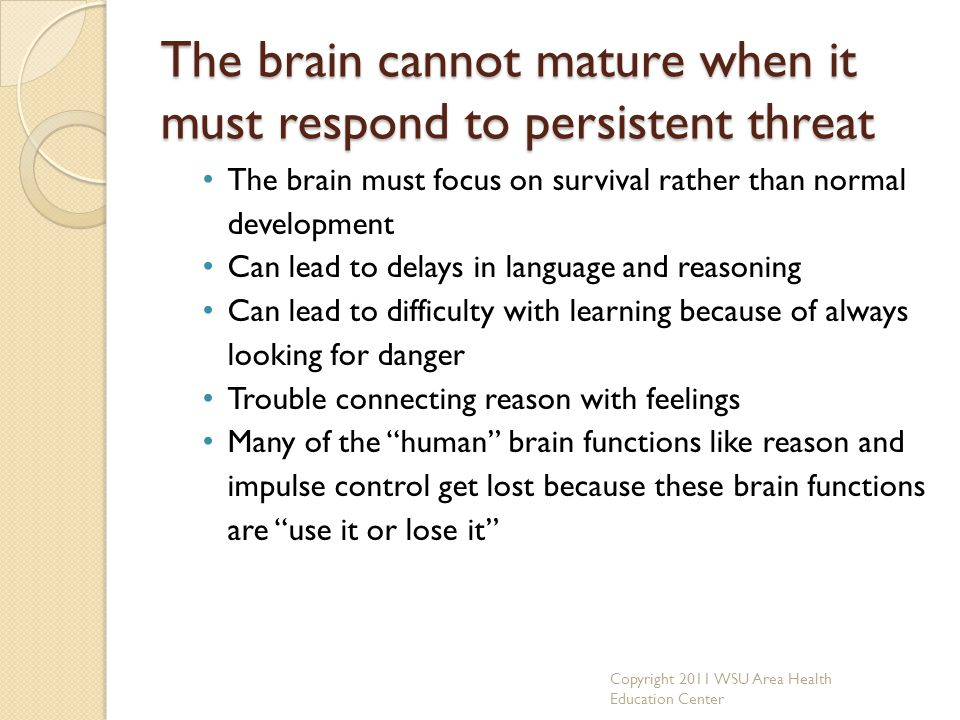 The brain cannot mature when it must respond to persistent threat