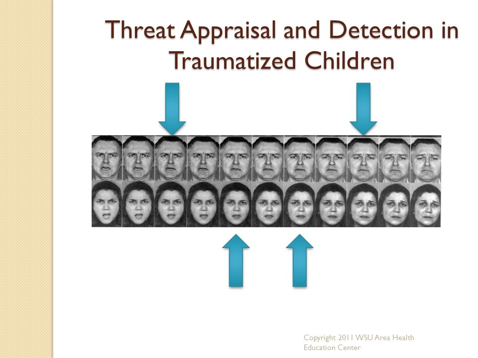Threat Appraisal and Detection in Traumatized Children