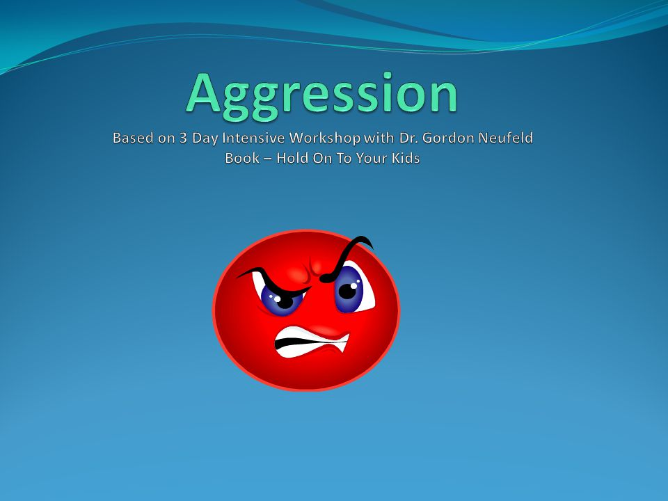 Aggression Based on 3 Day Intensive Workshop with Dr