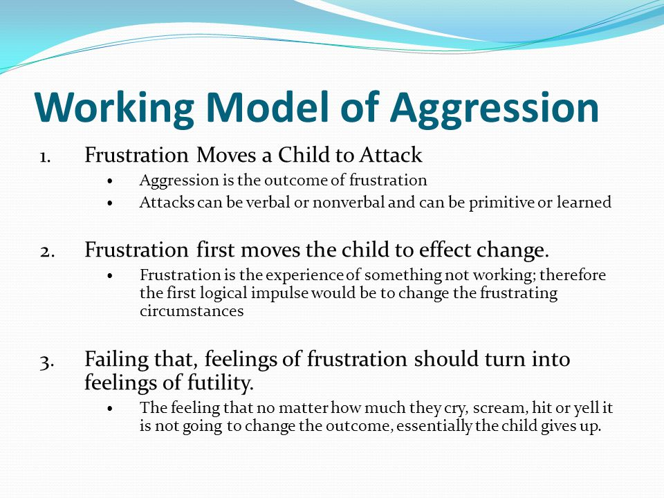 Working Model of Aggression