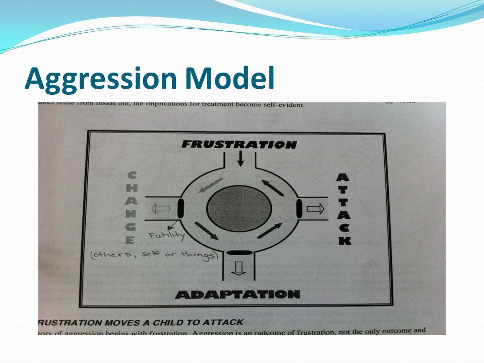 Aggression Model