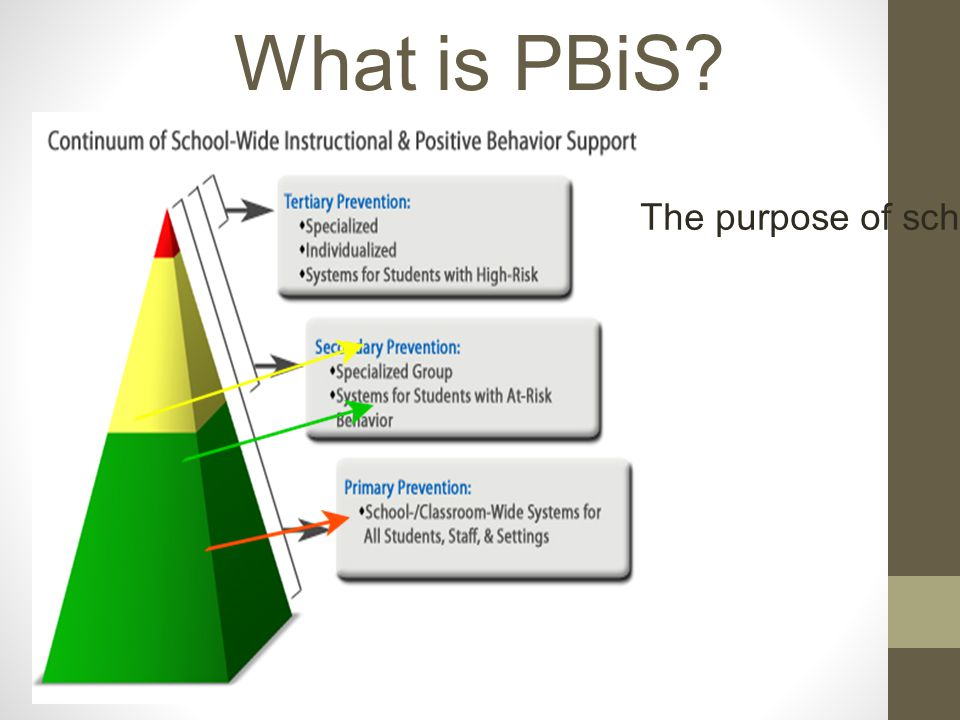 PBiS is not... a specific practice or curriculum…it's a general approach to preventing problem behavior.